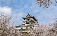 岐阜城と犬山城が、いつもの風景
