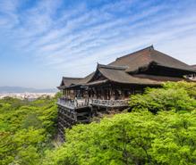 京都寺社めぐりの趣味