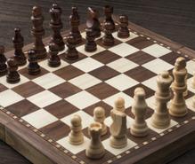 チェスの趣味