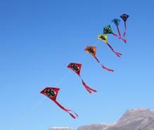凧揚げの趣味
