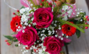 フラワーアレンジメントのオススメ花材5選の趣味
