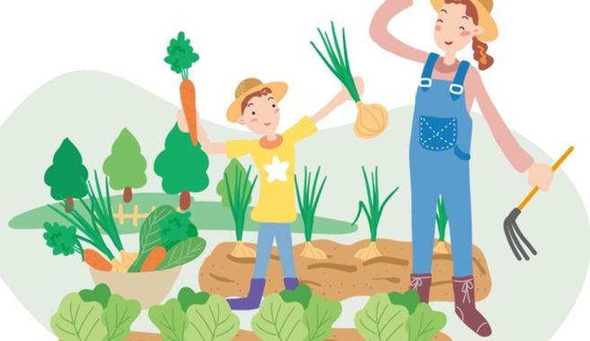 子供と家庭菜園を楽しんでいます